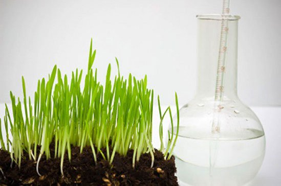 Soil Testing from Natural Way Lawn